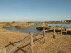 Marais des salines