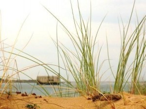 Ford Boyard, vue de la plage ile Oléron
